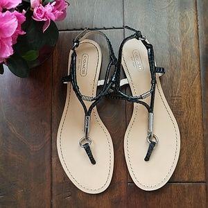 🐍Coach Black Opal Snake Thong Sandal (8.5)